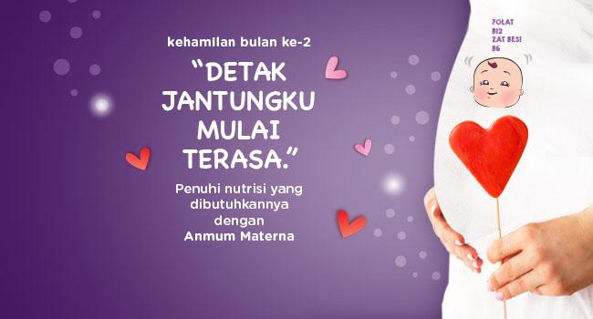 Perkembangan Kehamilan Bulan 2 Anmum Indonesia