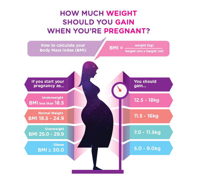 How Much Weight Should You Gain When You Are Pregnant Anmum My